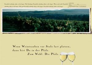 Emotionale Headlines für die Pfalz