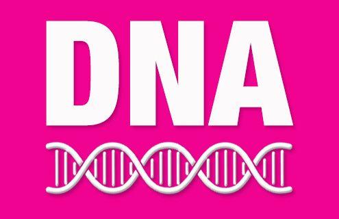 Was gehört zur DNA einer Agentur? Gute Webetexte!